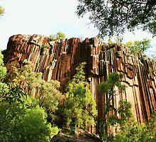 Sawn Rocks, Narrabri NSW Australia  by Liza Barlow