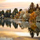 Golden Morning by Kory Trapane