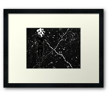 Agent Skulley Framed Print