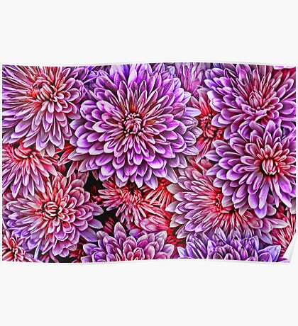 Multitude of flowers Poster