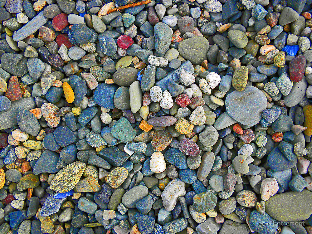Beach Gems - Diamonds in Disguise  by Lee d'Entremont