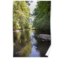 River Dart near Buckfastleigh Poster