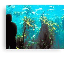 Capetown Aquarium, South Africa Canvas Print