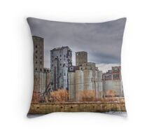 Its Not All Beautiful Throw Pillow