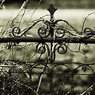 Gate by Hayely Queen