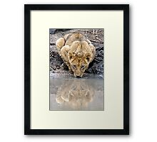 I See You....Twice Framed Print