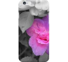 Galaxy Rose iPhone Case/Skin