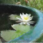 Water Lily in the style of Monet by Penny Alexander