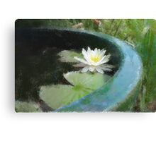 Water Lily in the style of Monet Canvas Print