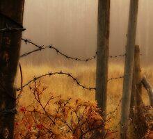 A Foggy Fall Morning by Jennifer Brewer