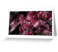 Bubbly and Pink Greeting Card