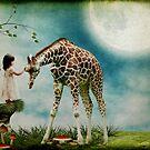 Wonder..... by Carol Knudsen