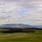 The Ochil Hills And Loch Leven by Lynne Morris