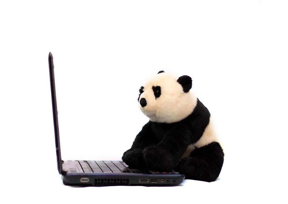 Panda and Laptop by kavisimi