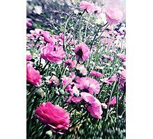 Running Free Photographic Print