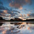 Kylie's Tasmania by Kylie  Sheahen