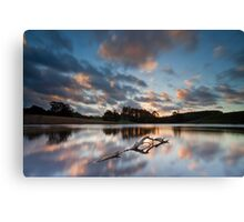 Rising Above Canvas Print