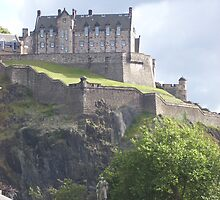 The Castle! - The David Gray Collection by adgray