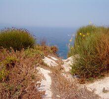 pathway to sea - corfu by katiebm