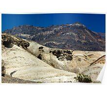 Desert Contrast Poster
