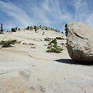 Lunar Rock by Dawn Parker