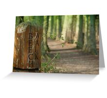 A Walk on the Beech! Greeting Card