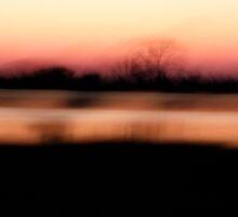 Marsh Light by Leslie Guinan