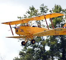 De Havilland Tiger Moth Taking Off by genez