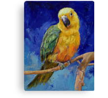 Jenday Conure Canvas Print