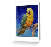 Jenday Conure Greeting Card