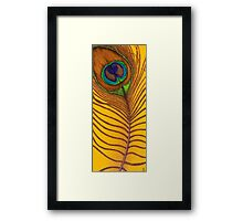 Colourful Peacock Tail Feather Painting Cauda Pavonis  Framed Print