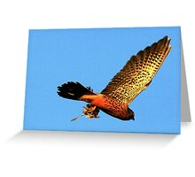 Away With The Prey Greeting Card