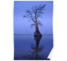 Moonrise Blues Poster