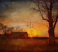 Sunset Over The Farm by Michael  Petrizzo