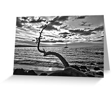 Serenity At Last Greeting Card