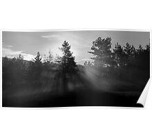 Sunrise bursting through trees and mist at Palsko Lake Poster