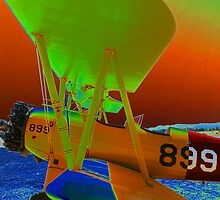 899 Bi Plane by Diane E. Berry