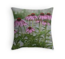 Echinacea In The Park Throw Pillow