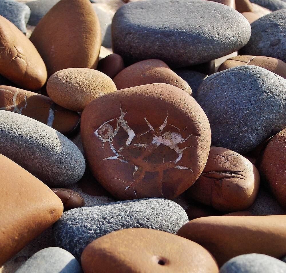 Gray and Brown Beach Stones by Kathilee