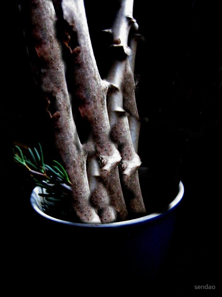 trunks in a cup by sendao