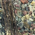 Montana Riverbed 4 by Robert Goulet