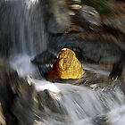 Rock of gold by Jennifer Eurell