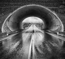 THE TUNNEL by TheresaTahara