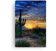 Sonoran Sunrise  Canvas Print