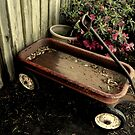 Little Red Wagon by Dawn di Donato
