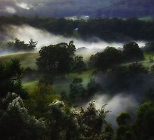 'Colours in the Mist' by debsphotos