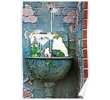 Green Water Basin Poster