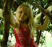 Birthday Fairy by Samantha Higgs