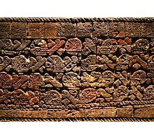 Mayan pictograph at the Anthropological Museum in Mexico City  Photographic Print