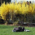 Spring in Paris-Scenes from Mountsouris Park (1) by Goca